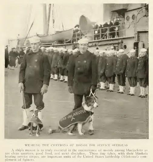 Mascots of the 'U.S.S. Oklahoma', World War I photo 1919_USS_OKLAHOMA_DOGS.jpg