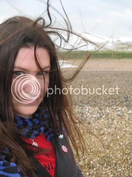A windy day one brighton Beach.