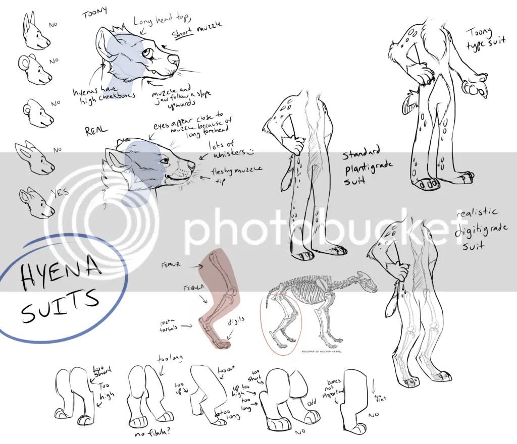 Hyena Fursuit Reference