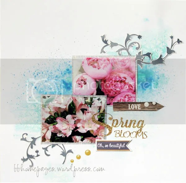 photo SpringRocks_SB_27Feb15_zpsvuigobb0.jpg