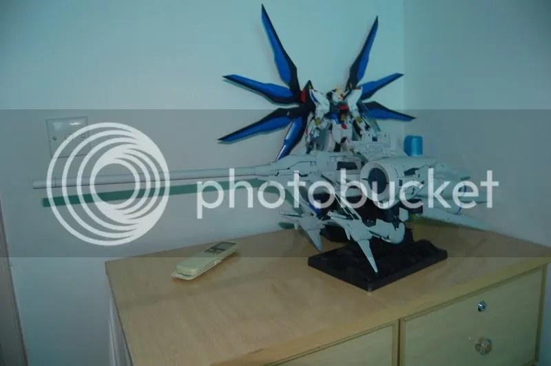 Dendrobium 6