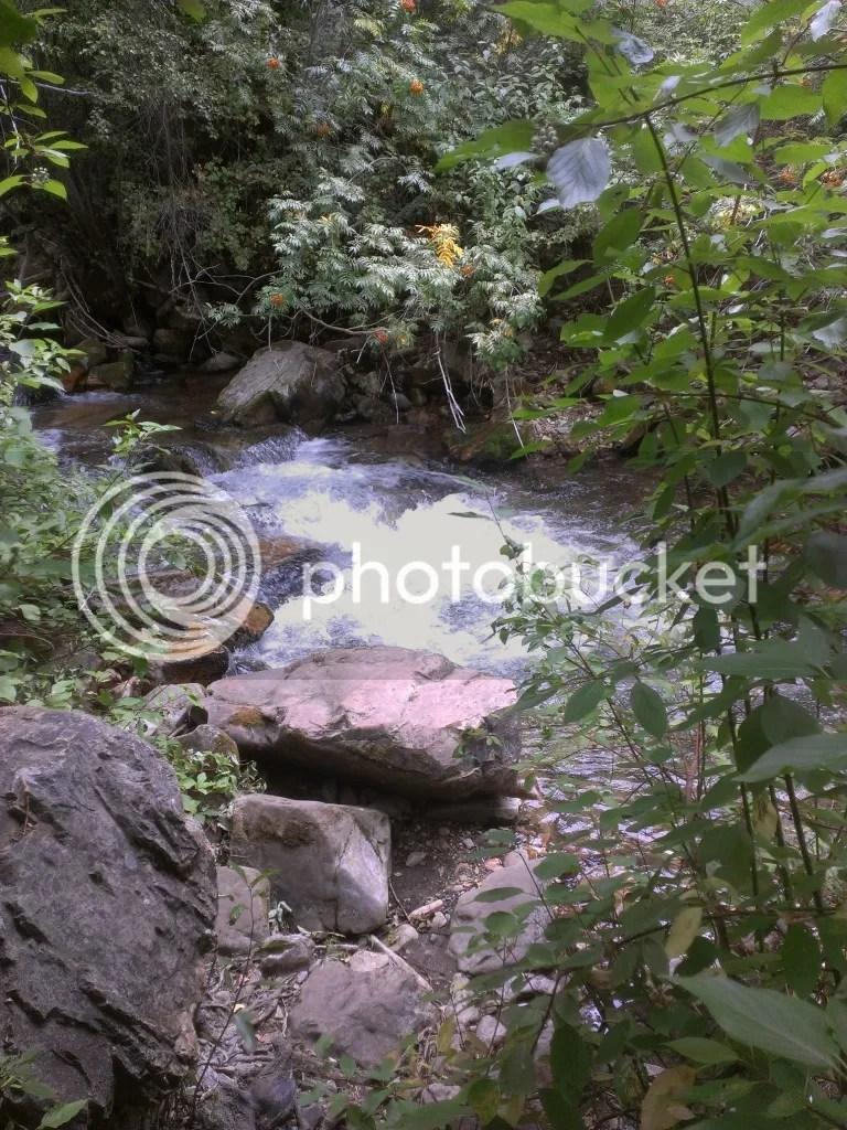 Rushing water up Little Cottonwood Canyon