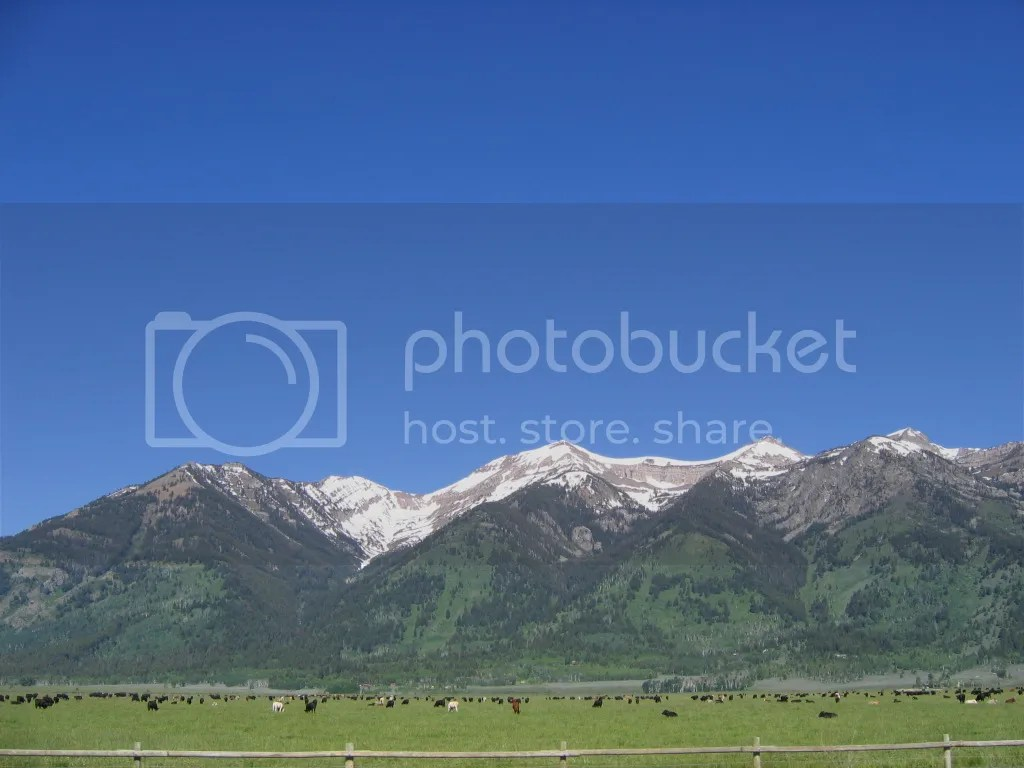 Pasture and Mountains