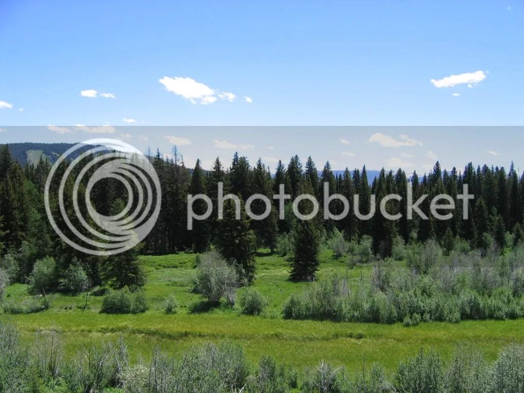 Grand Teton Peaks 2