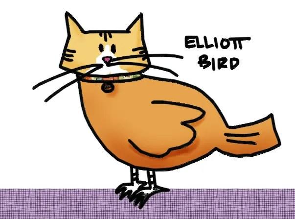birding it with elliott