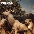 interpol Some Tuneage, For Your Consideration