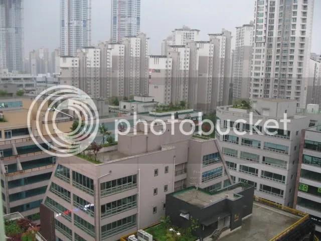 Dongtan