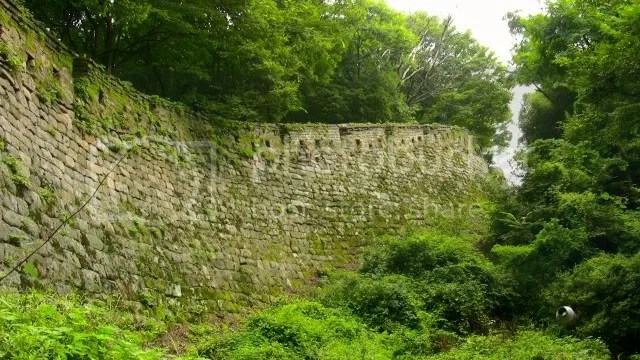 The Fortress Wall