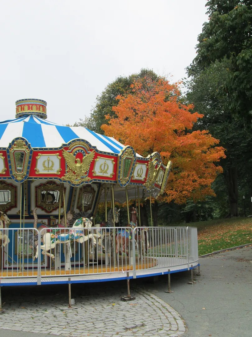 carousel in front of tree with orange autumn foliage