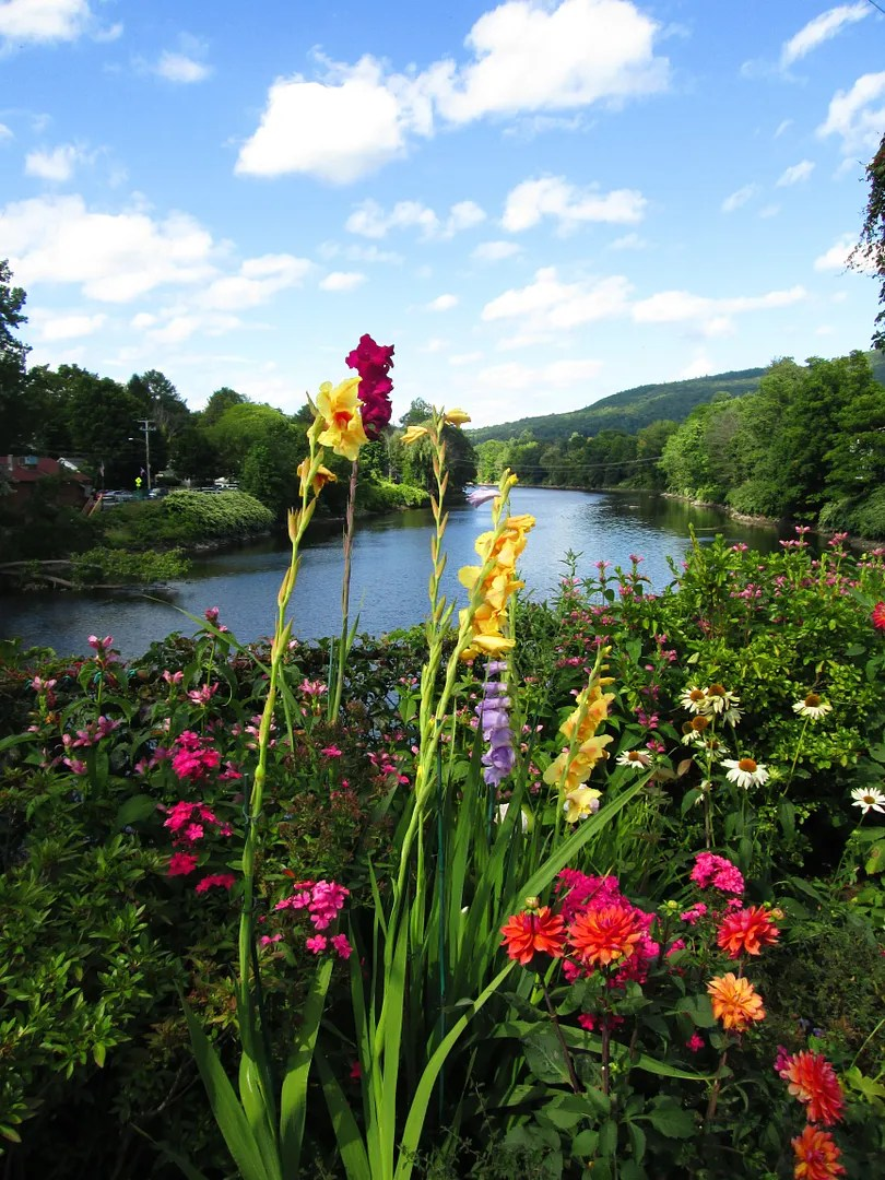 flowers overlooking the river on the shelburne falls bridge of flowers
