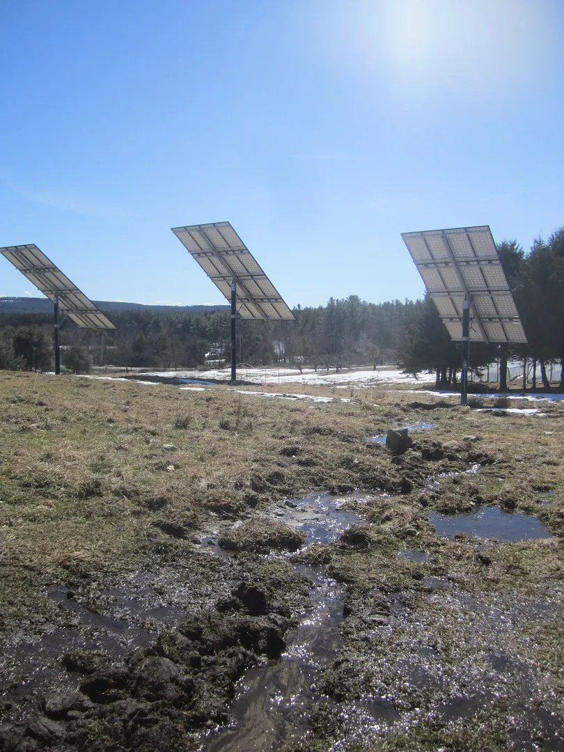 solar panels next to a muddy stream on a farm