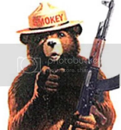 should we arm bears?