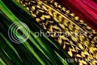 HairFeather.com