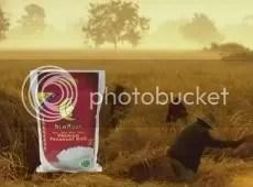 Stefanie Sun New Moon Premium Fragrant Rice Ad 9.