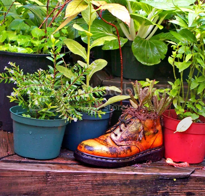 Boot,Garden,planter,LongVue House