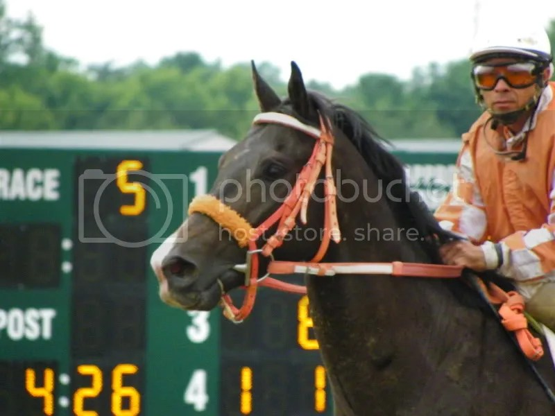 Send Cash comes back from a race at Pinnacle Race Course with Federico Mata aboard.