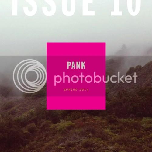 PANK 10