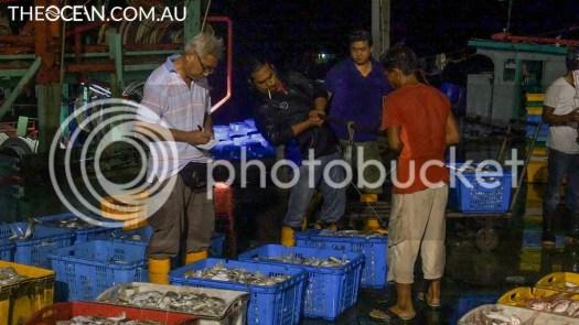 Malaysia Fish Markets Ocean Imaging