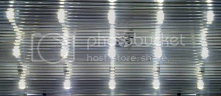 LED Frig
