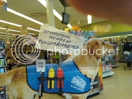 Tailgating Dog