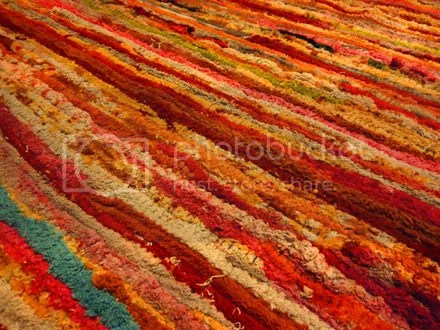 Gay Shag Carpet