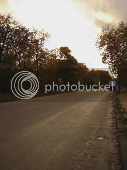 Empty Bois de Bologne