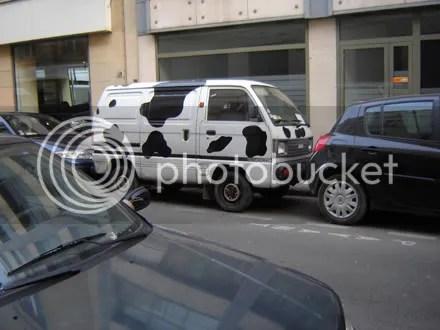 Holstein Van