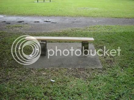 Improvised Bench