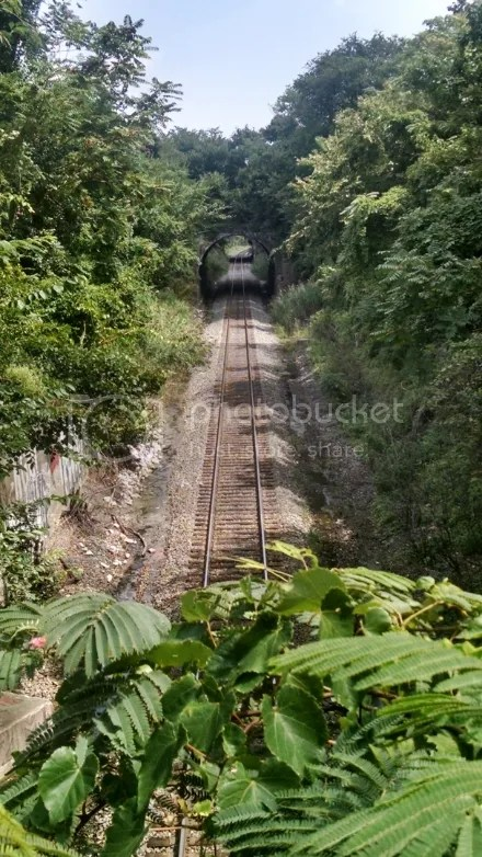 Forgotten Rail