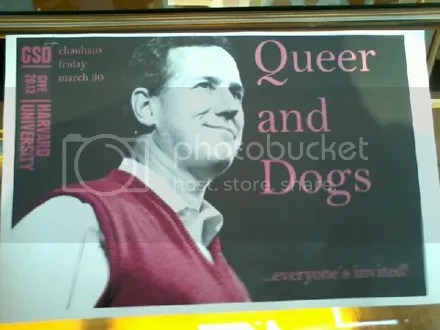 Queer and Dogs