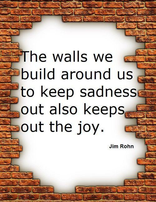 """Image result for """"The walls we build around us to keep sadness out also keeps out the joy."""""""