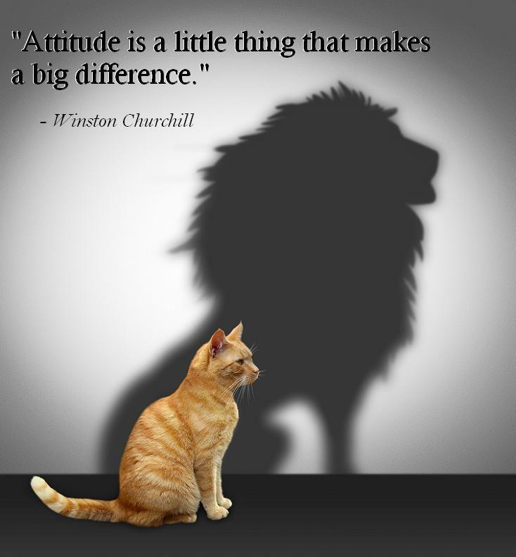 Bilderesultat for Attitude is a little thing that makes a big difference