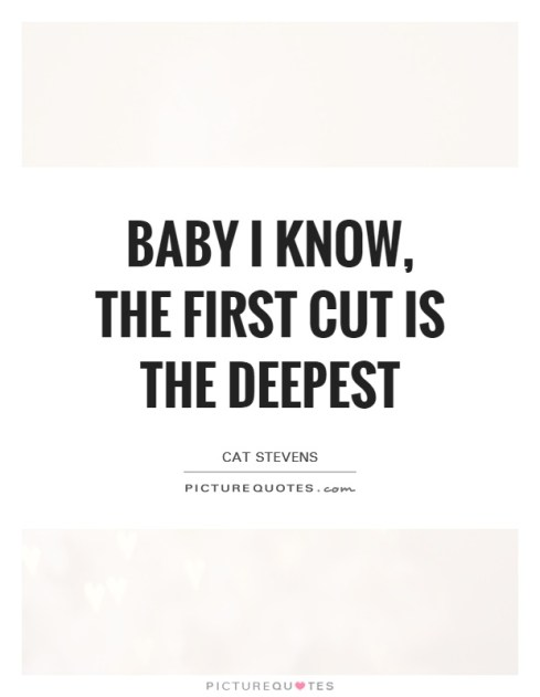 Image result for the first cut is the deepest