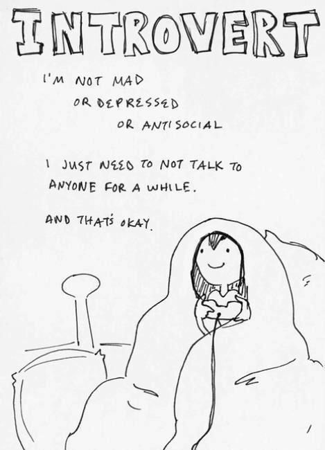 Image result for introverted quotes