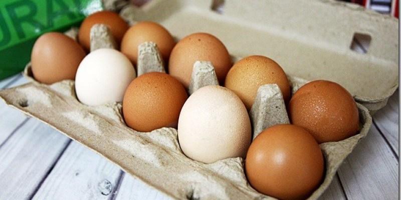 DIY食譜 【達仁牛樟蛋】營養滿分的蛋食譜及沙琪瑪是小朋友的活力來源