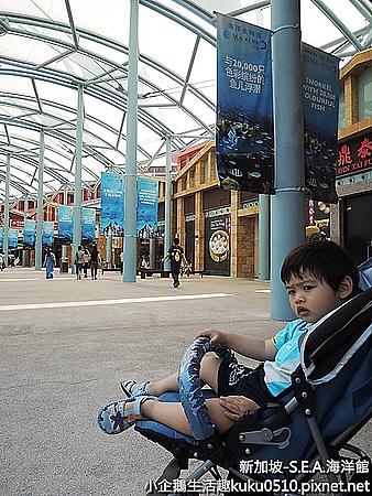 國外‧新加坡 全球最大的海洋館就在新加坡《S.E.A海洋館》
