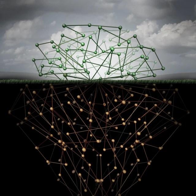 Web normal - deep web