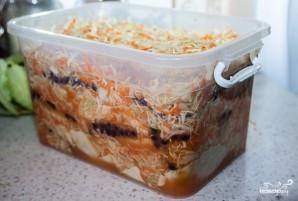 Квашеная капуста с клюквой - пошаговый рецепт с фото на ...