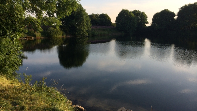 The boy was swimming with two friends when he got into difficulty in a reservoir in Rosehall