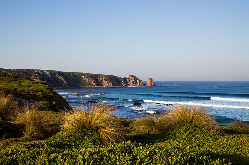 1-Day Phillip Island Day Tour