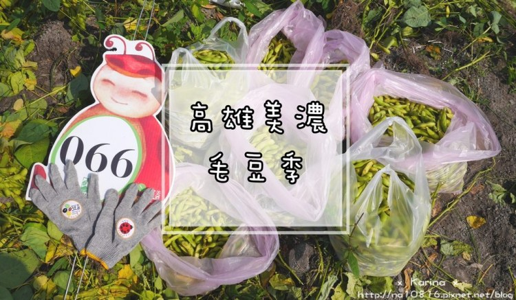 【高雄*遊記】美濃農村樂遊遊 x 一起來毛豆季採毛豆吧 ♥