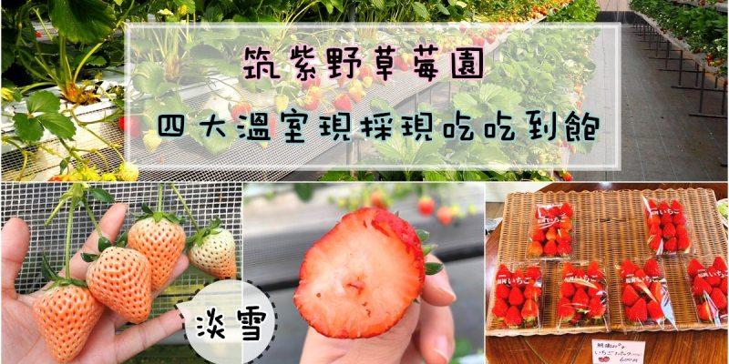 九州福岡採草莓|筑紫野草莓園草莓吃到飽 全園區草莓現採現吃 有淡雪哦!!