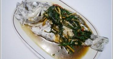 (魚) 超好吃的隱藏版魚種---大目鱸