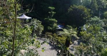 (食)台北縣三峽鎮的花岩山林