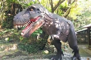 沖繩景點│名護│親子 DINO恐龍公園 山原亞熱帶之森 沖繩恐龍樂園