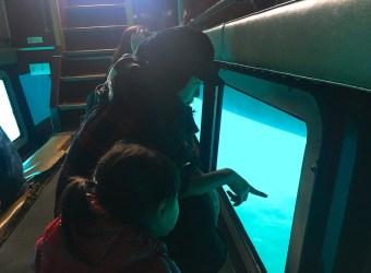 沖繩水上活動 沖繩景點 水中觀光船 坐船去看魚囉!Veltra網站訂購行程好簡單