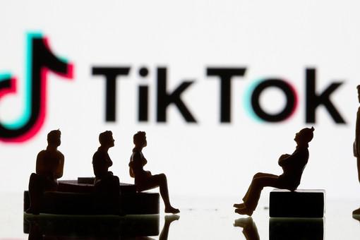 Звезды TikTok рассказали, насколько соцсеть безопасна для ...