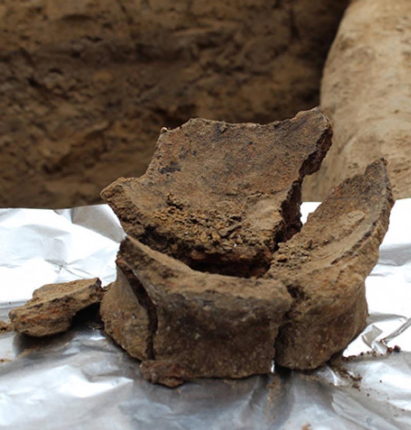 Fragmento de una vasija del Neolítico lista para el análisis de residuos.