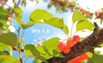 山本觀光果樹園   北海道余市  143年歷史,季節限定水果現採現吃到飽,還有海鮮BBQ