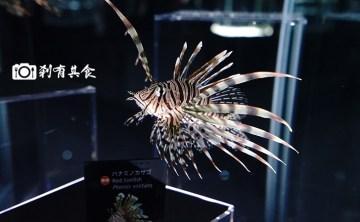【大阪必玩新景點】 EXPOCITY NIFREL (ニフレル) 活著的博物館 及 Orbi 皮卡丘館 三連發! 關西最熱門親子旅遊景點